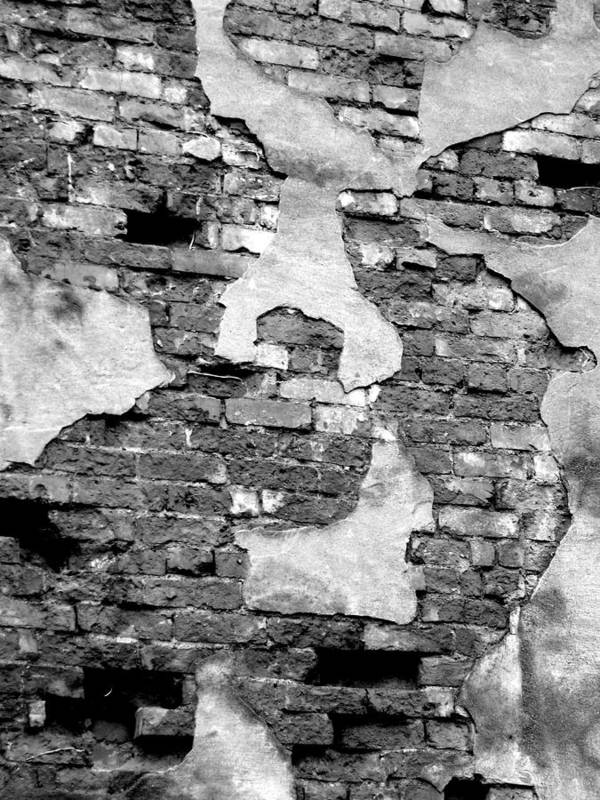 Brick Poster featuring the photograph Angry Decay by Donna Blackhall