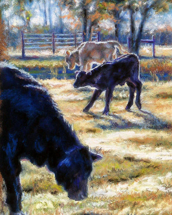 Animals Poster featuring the pastel Angus Calves Out With Dad by Denise Horne-Kaplan