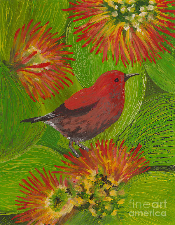 Hawaii Birds Poster featuring the painting 'apapane by Anna Skaradzinska