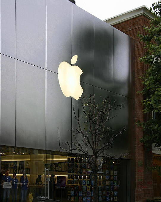 Apple Poster featuring the photograph Apple Store by Viktor Savchenko