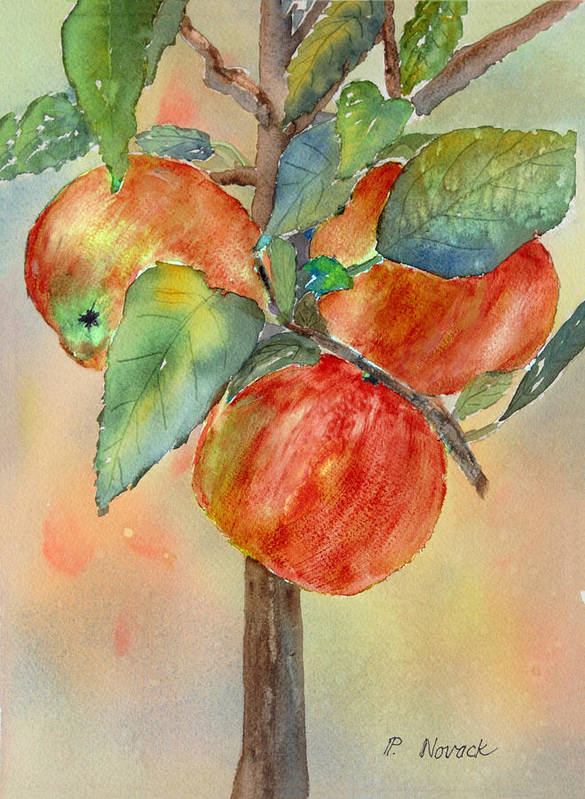 Apple Poster featuring the painting Apple Tree by Patricia Novack