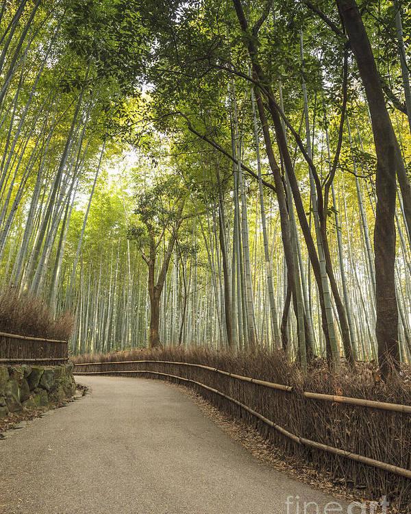 Arashiyama Poster featuring the photograph Arashiyama Kyoto Japan by Colin and Linda McKie