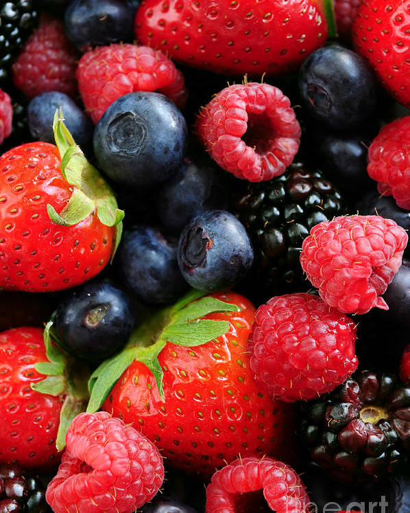 Berry Poster featuring the photograph Assorted Fresh Berries by Elena Elisseeva