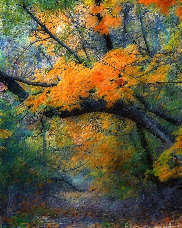 Autumn Poster featuring the photograph Autumn 4 by Jeff Breiman