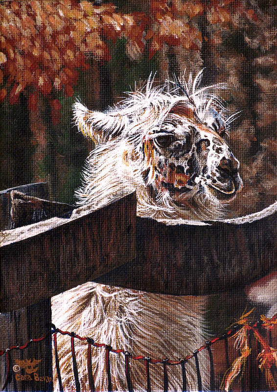 Llama Poster featuring the painting Autumn Greeting by Cara Bevan