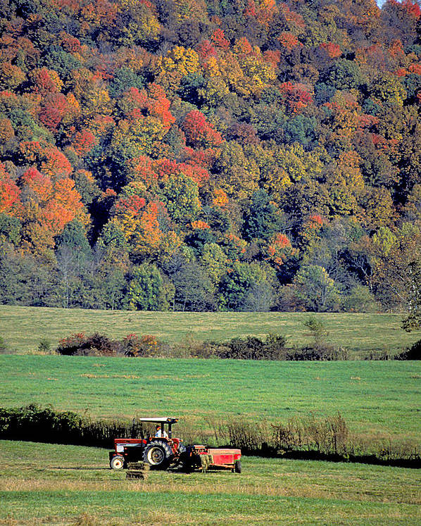 Tractor Poster featuring the photograph Autumn Harvest by Carl Purcell