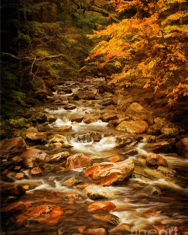 Autumn In Vermont Poster featuring the photograph Autumn In Vermont by Priscilla Burgers