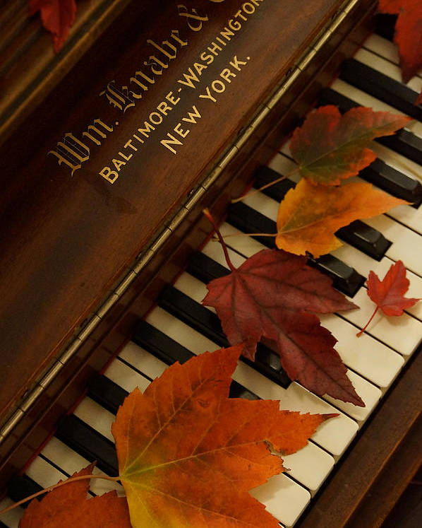 Autumn Poster featuring the photograph Autumn Piano 11 by Mick Anderson