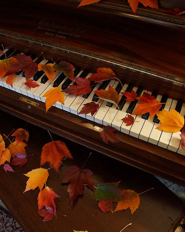 Autumn Poster featuring the photograph Autumn Piano 7 by Mick Anderson