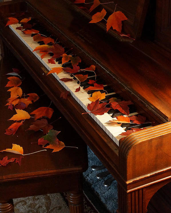 Autumn Poster featuring the photograph Autumn Piano 9 by Mick Anderson