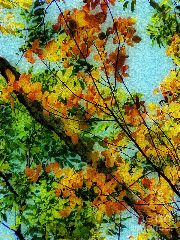 Fall Poster featuring the photograph Autumn Scenery by Jeff Breiman