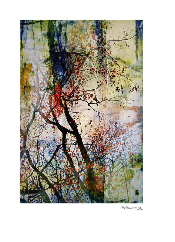 Autumn Tree Composition Poster featuring the digital art Autumn Tree Composition by Xoanxo Cespon