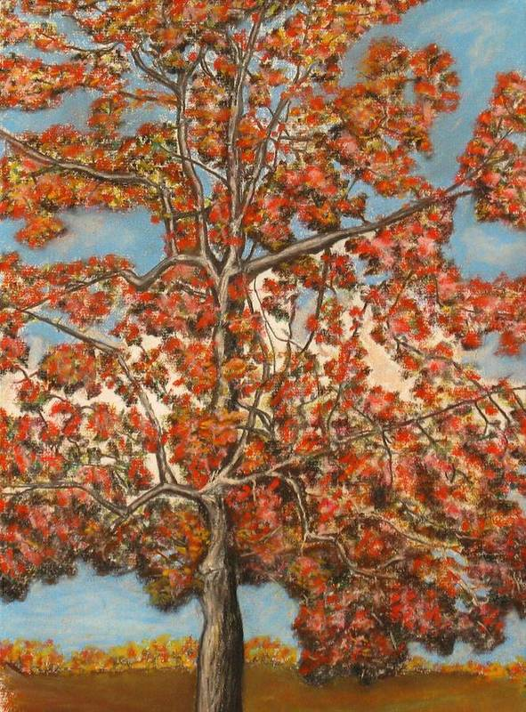 Nature Poster featuring the pastel Autumn Tree by Michael Anthony Edwards
