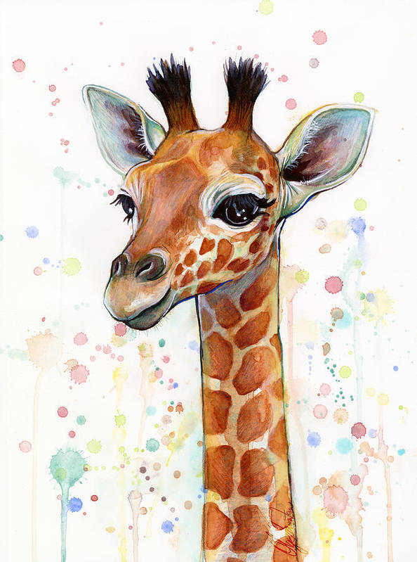 Watercolor Poster featuring the painting Baby Giraffe Watercolor by Olga Shvartsur