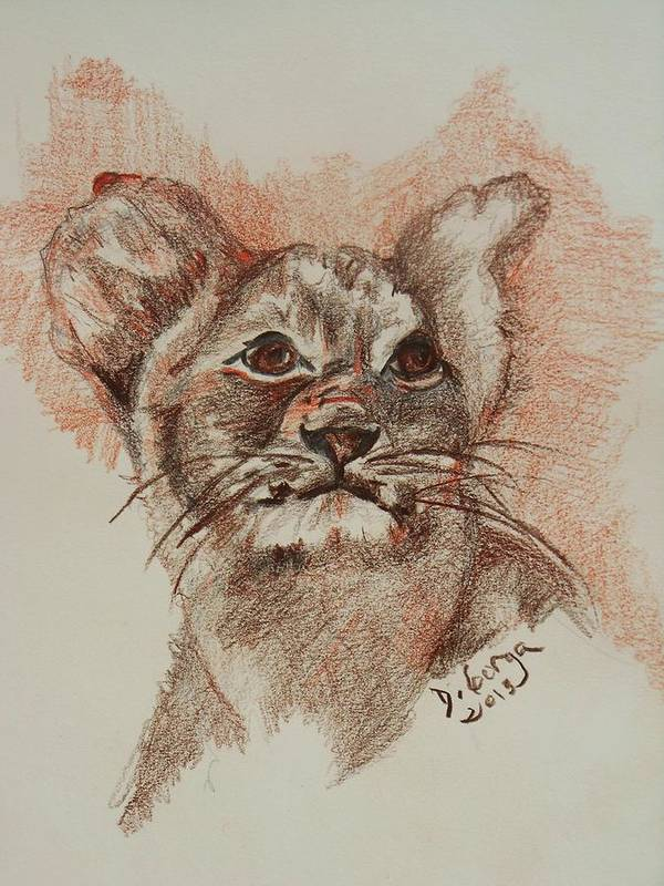 Wild Animals Poster featuring the drawing Baby Lion by Deborah Gorga