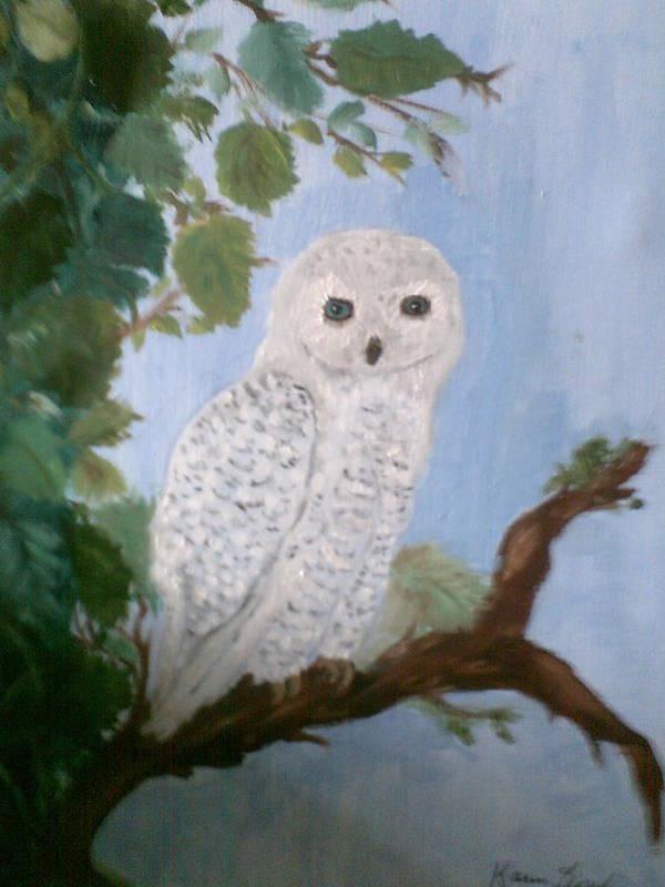 Birds Poster featuring the painting Barn Owl by Karen Lipek
