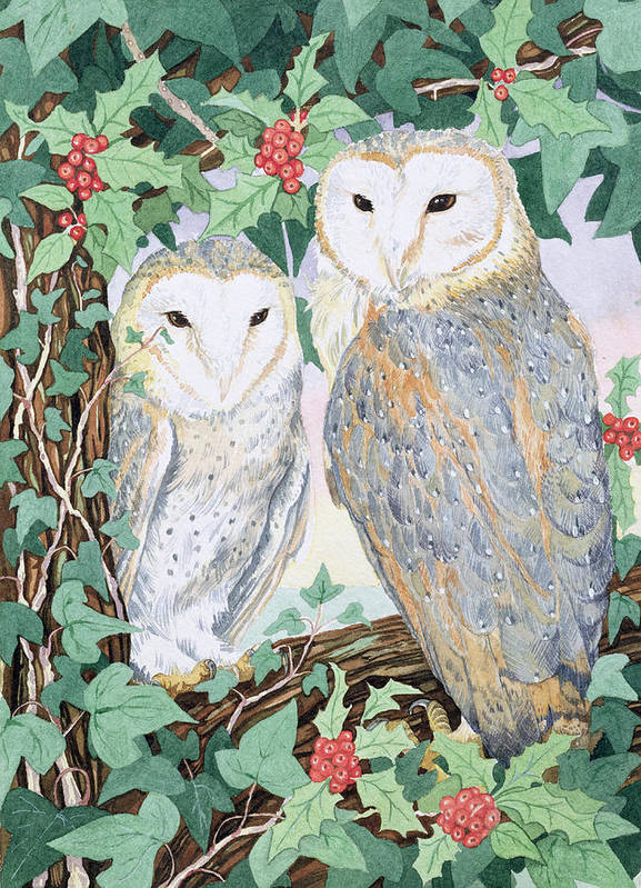Woodland Poster featuring the painting Barn Owls by Suzanne Bailey