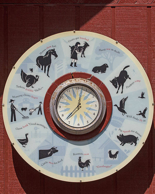 Barn Poster featuring the photograph Barn Yard Clock by Garry Gay