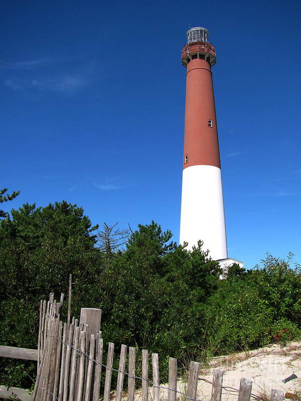 Lighthouse Poster featuring the photograph Barnegat Lighthouse by Colleen Kammerer