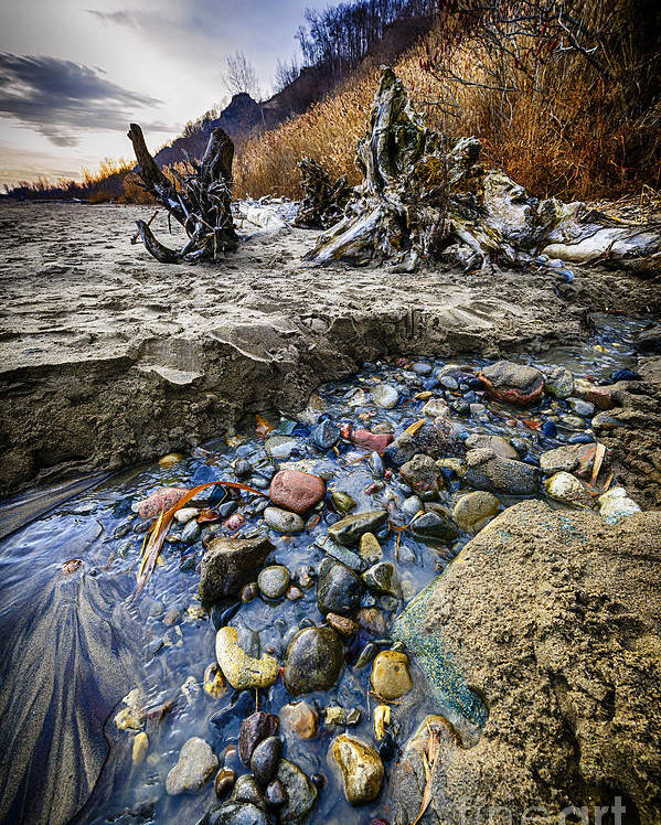 Beach Poster featuring the photograph Beach Brook At Scarborough Bluffs by Elena Elisseeva