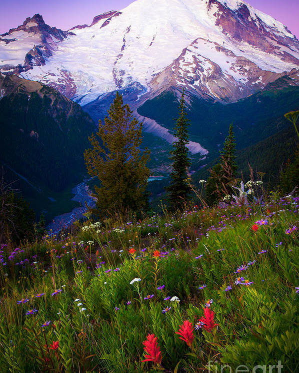 America Poster featuring the photograph Before Dawn At Mount Rainier by Inge Johnsson