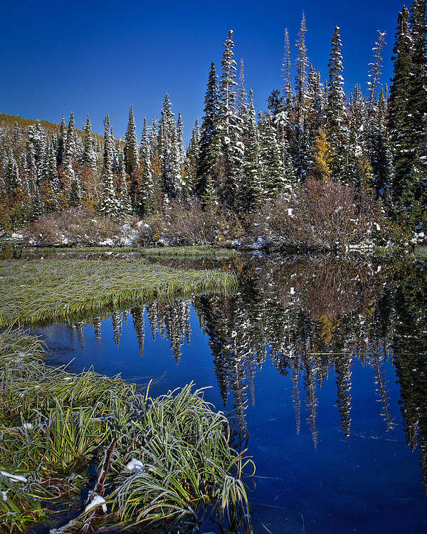 Reflecting Water Poster featuring the photograph Big Cottonwood Canyon by Richard Cheski