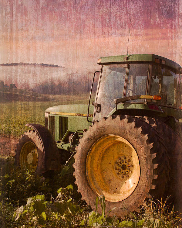 Appalachian Poster featuring the photograph Big John by Debra and Dave Vanderlaan