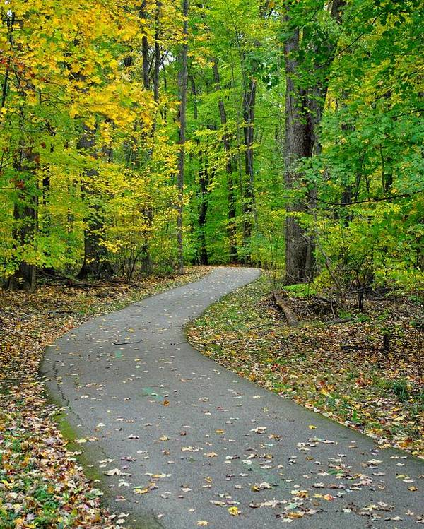 Pathway Poster featuring the photograph Bike Path by Frozen in Time Fine Art Photography