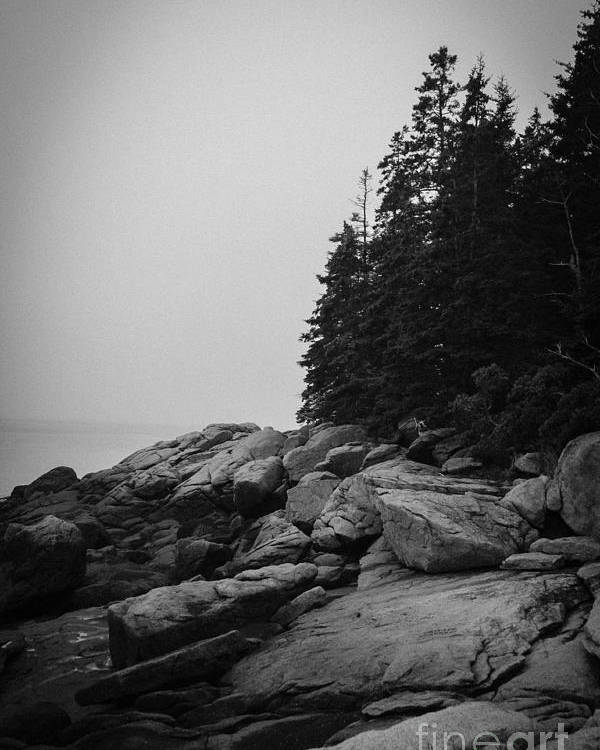 Beach Poster featuring the photograph Birch Point Black And White by Belinda Dodd