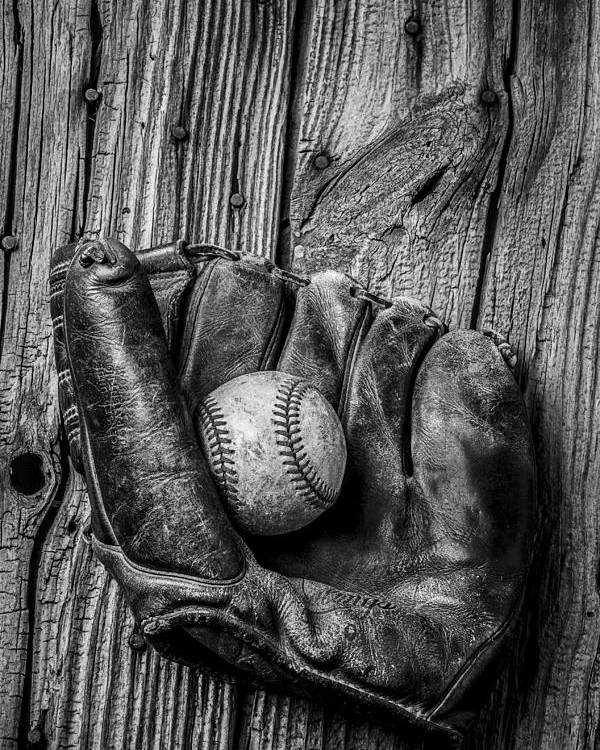 Black Poster featuring the photograph Black And White Mitt by Garry Gay