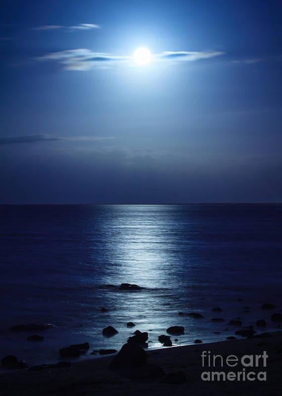 Blue Moon Poster featuring the photograph Blue Moon Rising by Peta Thames