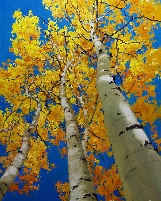 Blue Sky And Tall Aspen Trees Poster featuring the painting Blue Sky And Tall Aspen Trees by Gary Kim