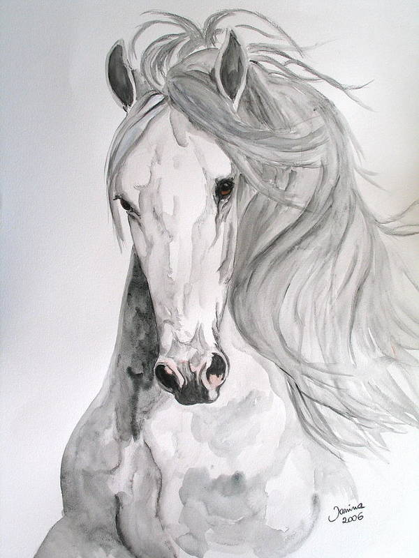 Horse Original Painting Poster featuring the painting Boyardo by Janina Suuronen