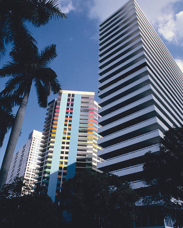 Palm Trees Poster featuring the photograph Brickell Avenue Condos Miami by Carl Purcell
