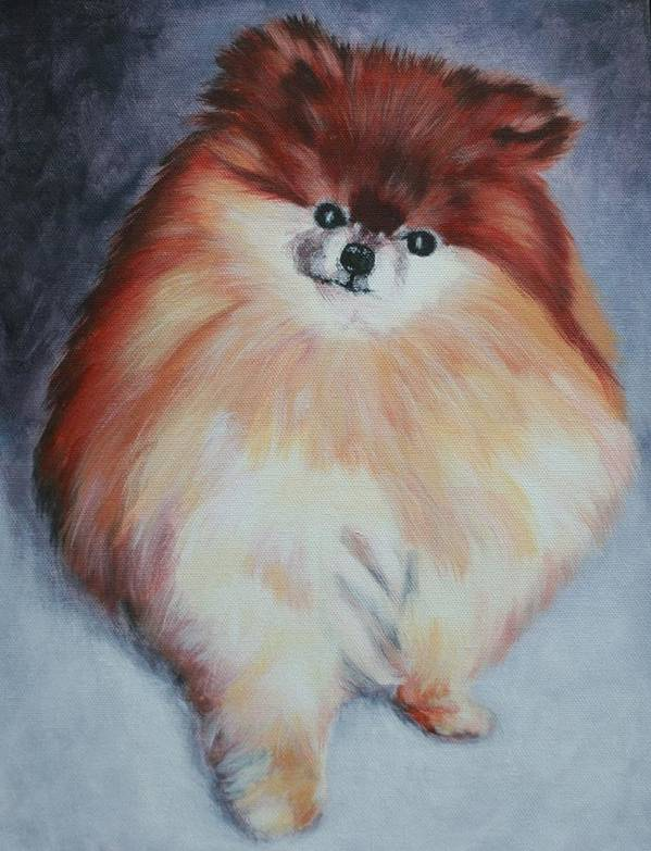 Dog Poster featuring the painting Buddy - Pomeranian by Wendy Whiteside