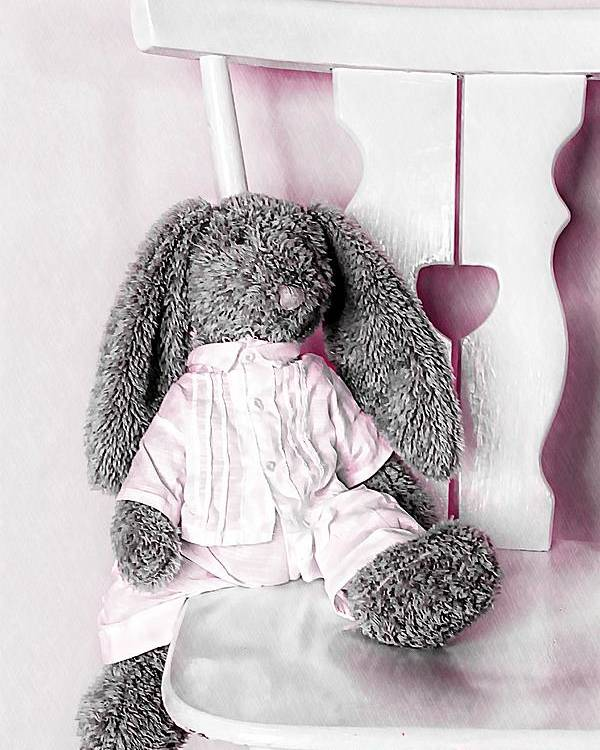 Bunny Poster featuring the photograph Bunny by Anne Costello