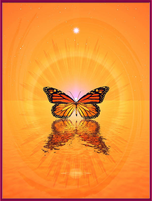 Symbolic Digital Art Poster featuring the digital art Butterfly II by Harald Dastis