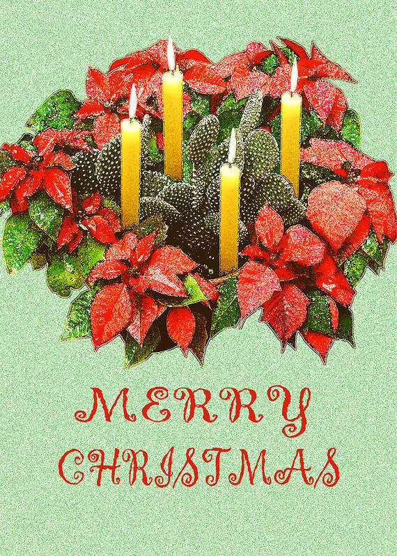Christmas Poster featuring the photograph California Cactus Christmas by Mary Helmreich