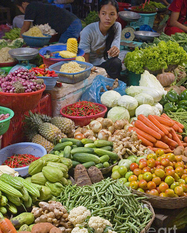 To Travel Poster featuring the photograph Cambodian Vegetable Market by Craig Lovell