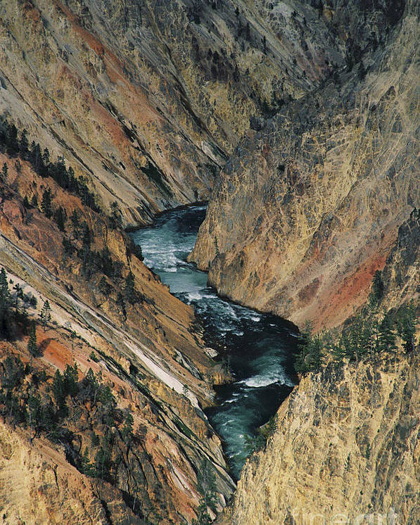 Yellowstone Poster featuring the photograph Canyon Jewel by Kathy McClure