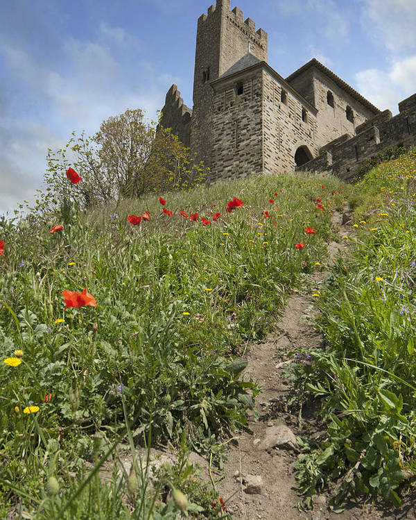 Carcassone Poster featuring the photograph Carcassonne Poppies by Robert Lacy
