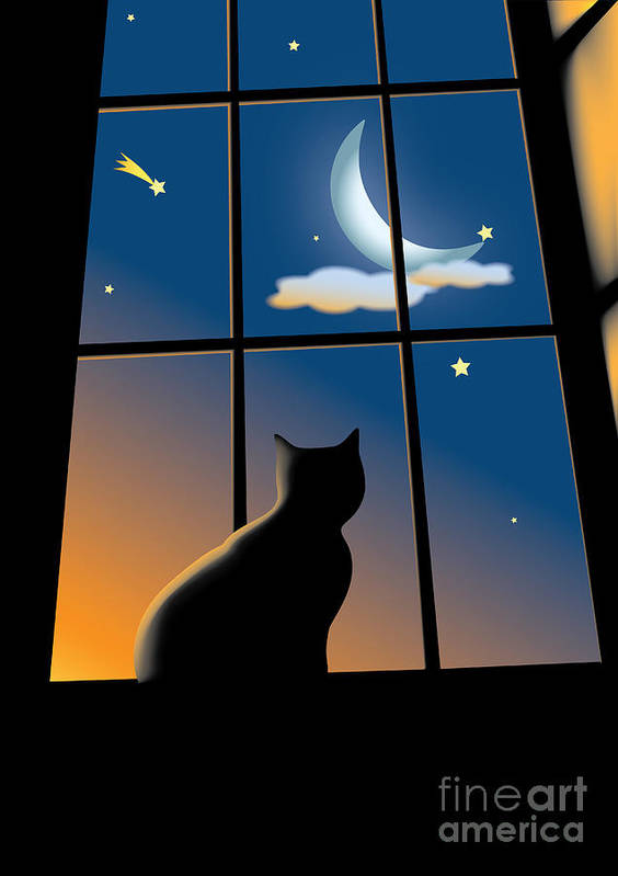 Window Poster featuring the drawing Cat On The Window by Aleksey Tugolukov