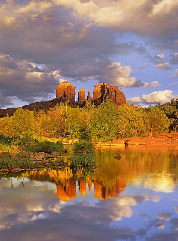 Arizona Poster featuring the photograph Cathedral Rock Reflected In Oak Creek by Tim Fitzharris