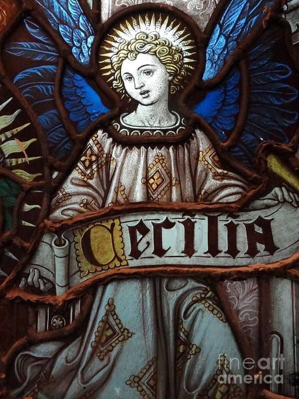 Stained Glass Poster featuring the photograph Cecilia by Ed Weidman
