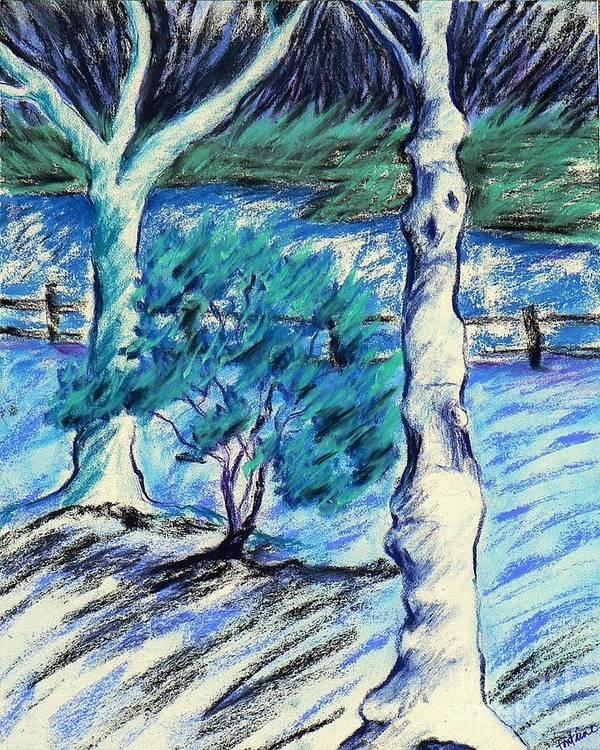 Blue Landscape Poster featuring the photograph Central Park Blues by Elizabeth Fontaine-Barr