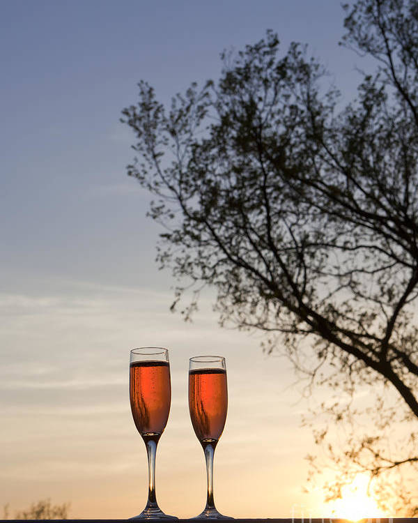 Champagne Poster featuring the photograph Champagne For Two by Kay Pickens