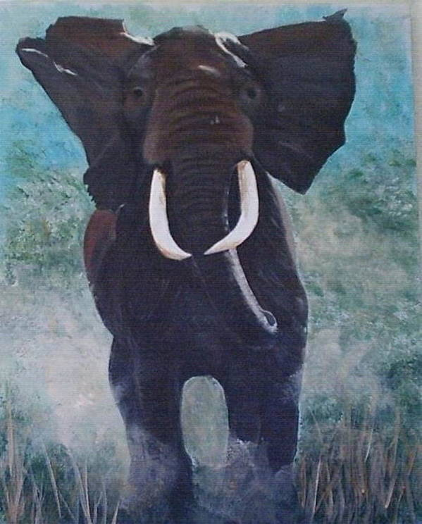Elephants. Wildlife Poster featuring the painting Charge by Catherine Swerediuk