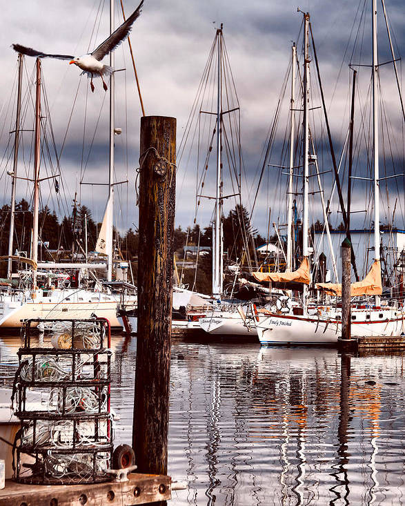 Charleston Oregon Poster featuring the photograph Charleston Marina At The End Of The Day by Sally Bauer