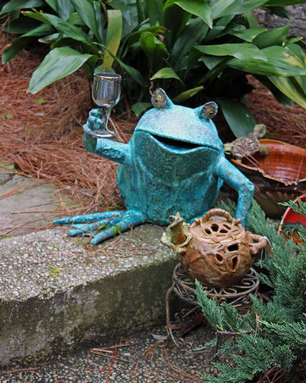 Frog Poster featuring the photograph Cheers by Suzanne Gaff