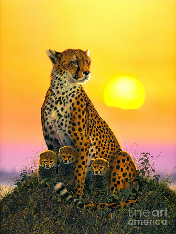 Cheetah Poster featuring the photograph Cheetah And Cubs by MGL Studio - Chris Hiett